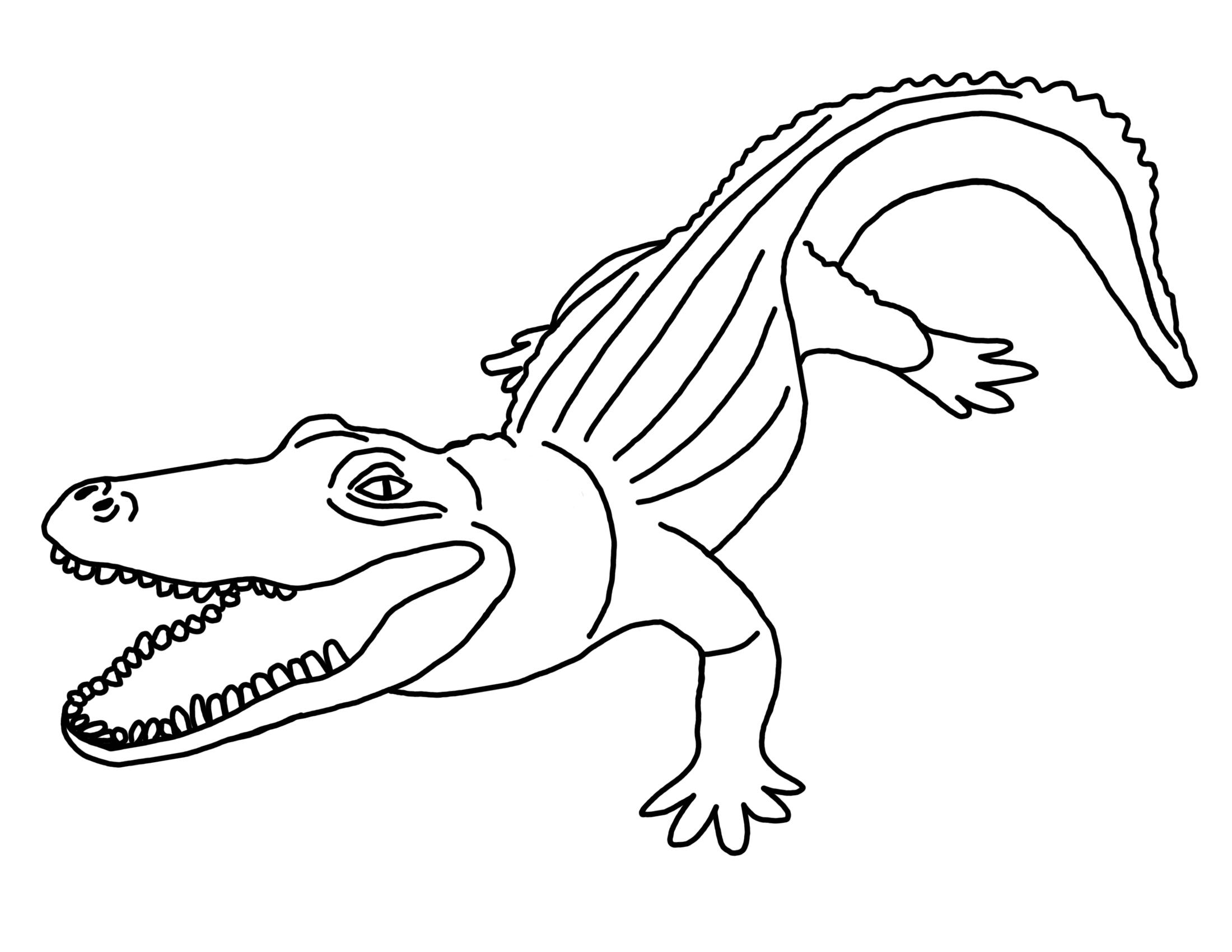аллигатор картинка раскраска молодым шпинатом всегда